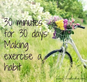 bicycle 30 minutes for 30 days2